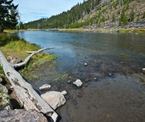 Madison River Fly Fishing Spot
